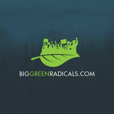 Image for Big Green Radicals