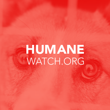Image for Humanewatch